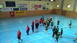06-11-presse-handball-1